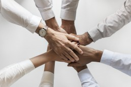 epic implementation optimized workforce